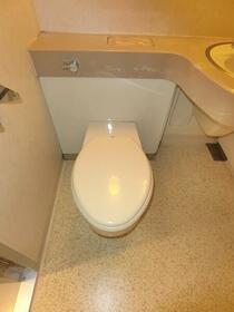 ヒルサイド白山 101号室のトイレ