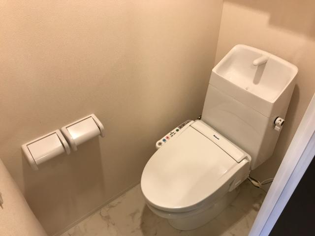 Shannon (シャノン) 202号室のトイレ