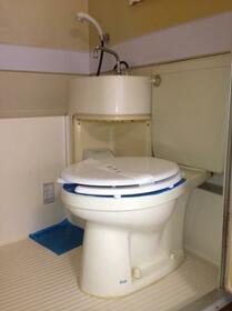 メゾン・ド・ソフォラ 0208号室のトイレ