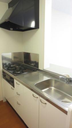 レオパレスエスポアールⅡ 107号室のキッチン