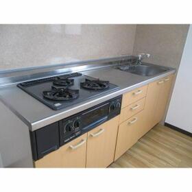 S-FORT守山(サムティ守山RESIDENCE) 0905号室のキッチン