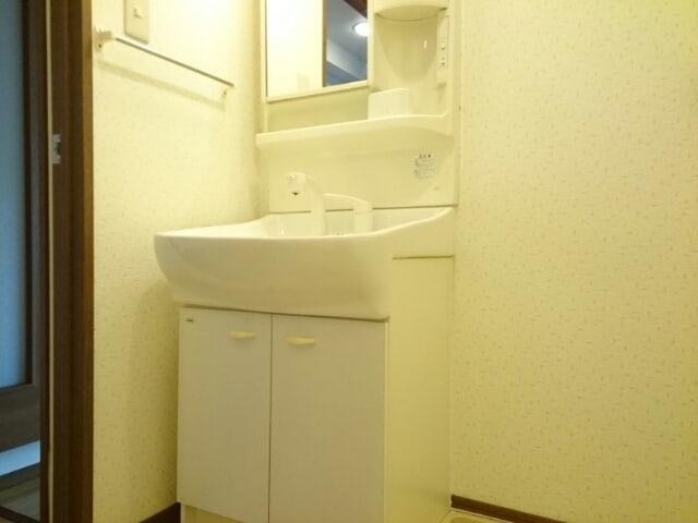 インテックスⅢ番館 02030号室の洗面所