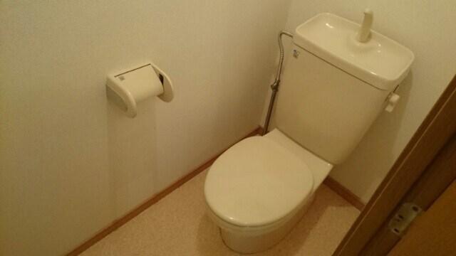 アンフィニ・アムールB 02010号室のトイレ