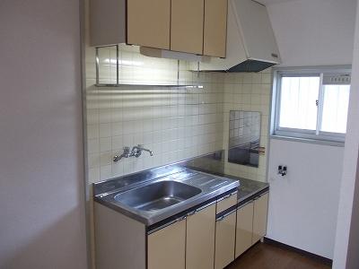 エルディム城南 01030号室のキッチン