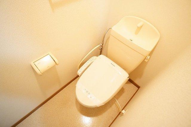 グランデ アウルム B 02010号室のトイレ