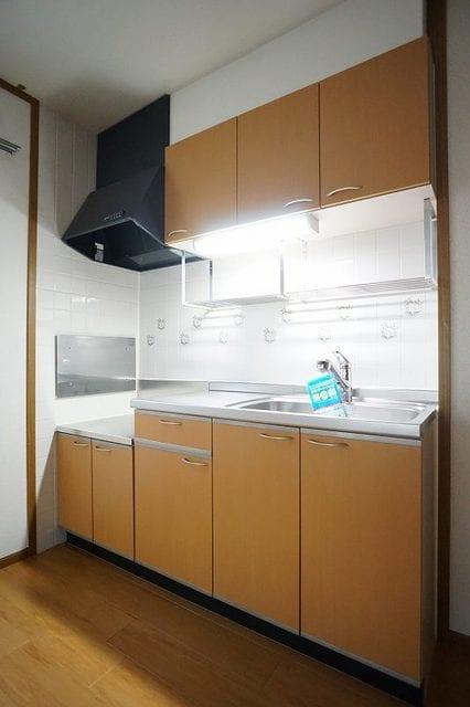 グランデ アウルム B 02010号室のキッチン