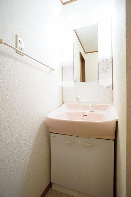 グランデ アウルム B 02010号室の洗面所