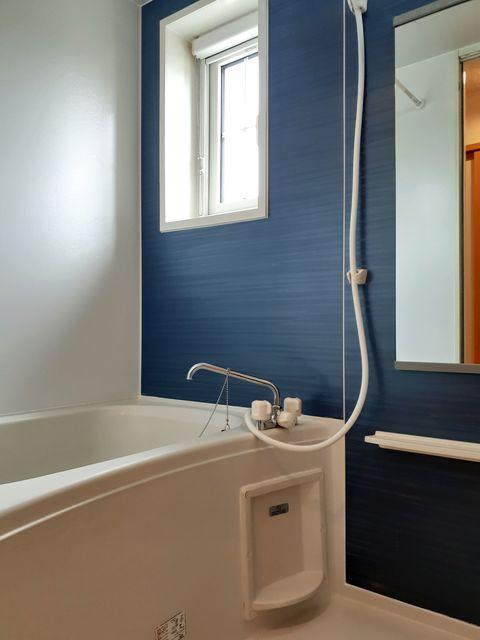 ラヴィアンローズ 02030号室の風呂