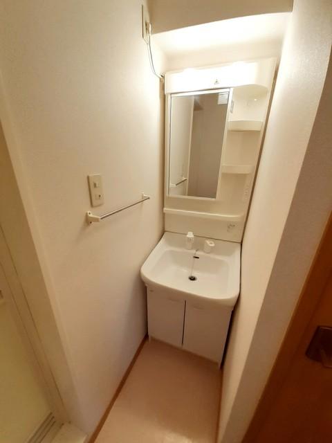 ミドル アーティクル 01020号室の洗面所