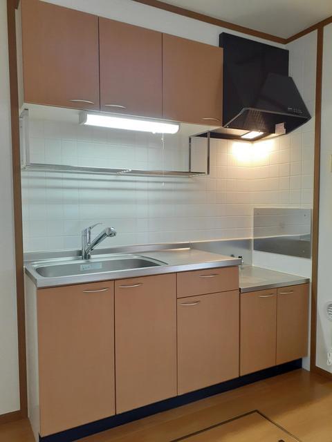 ウ゛ィオラ・トリコロル 01030号室のキッチン