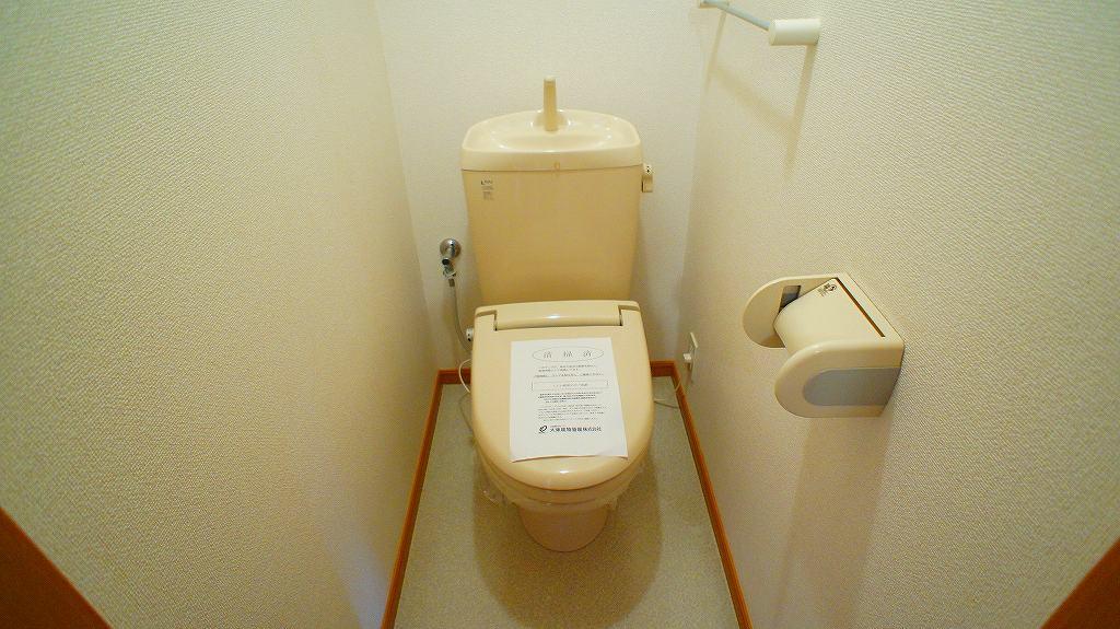 サイネリアA 02010号室のトイレ