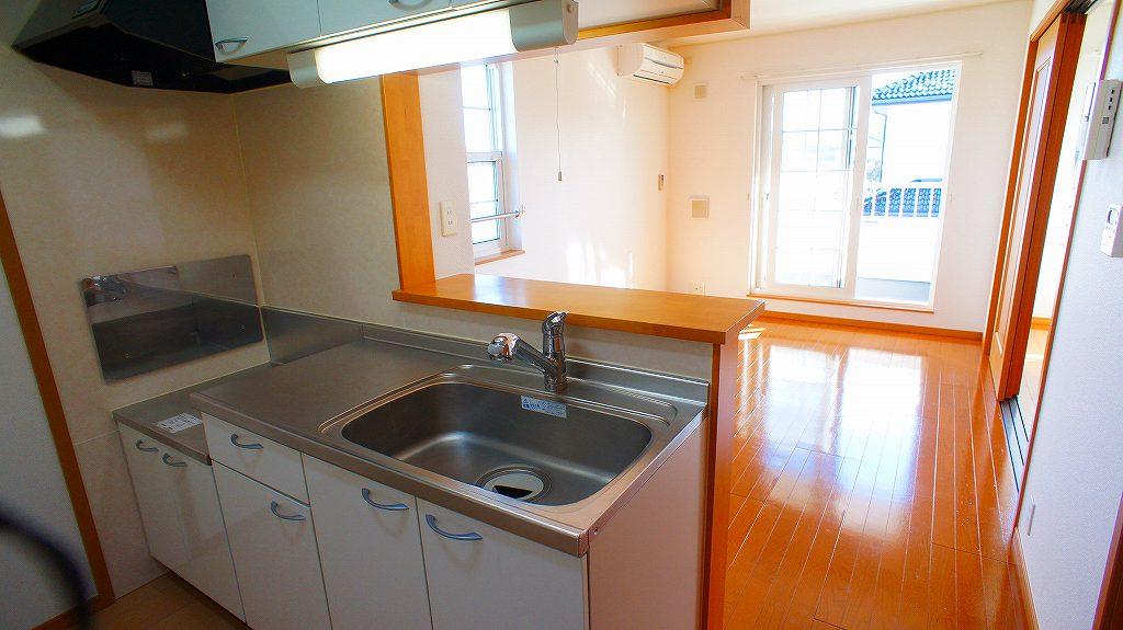 サイネリアA 02010号室のキッチン