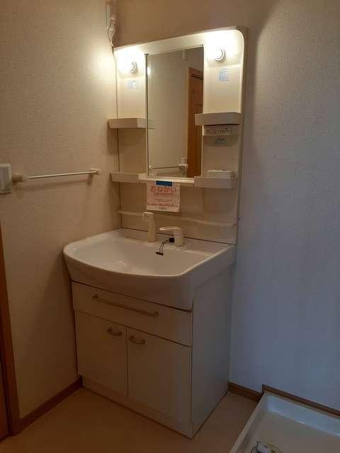 プラシードB 01010号室の洗面所