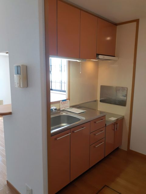 プラシードB 01010号室のキッチン