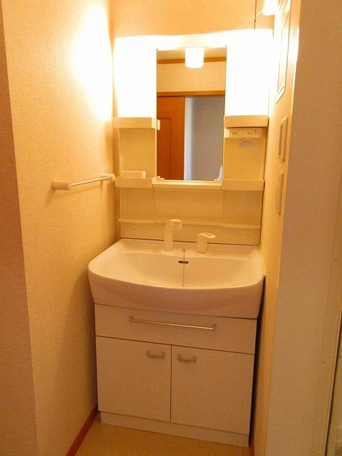 ルーナ・ピエーナ 02030号室の洗面所
