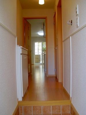 サニーハウス 01020号室の玄関