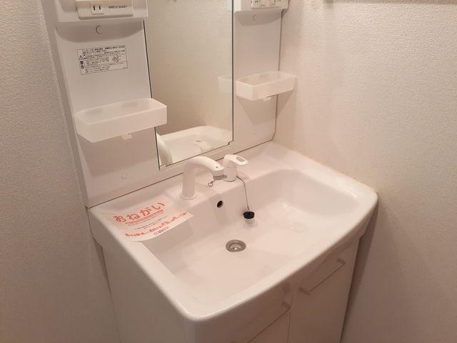 リュミエール 01050号室の洗面所