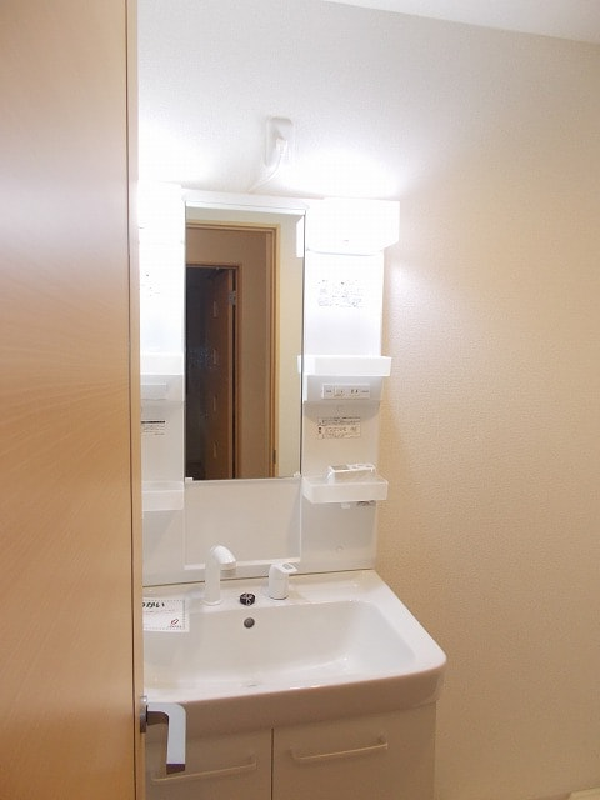 グリーンフォレストC 02010号室の洗面所