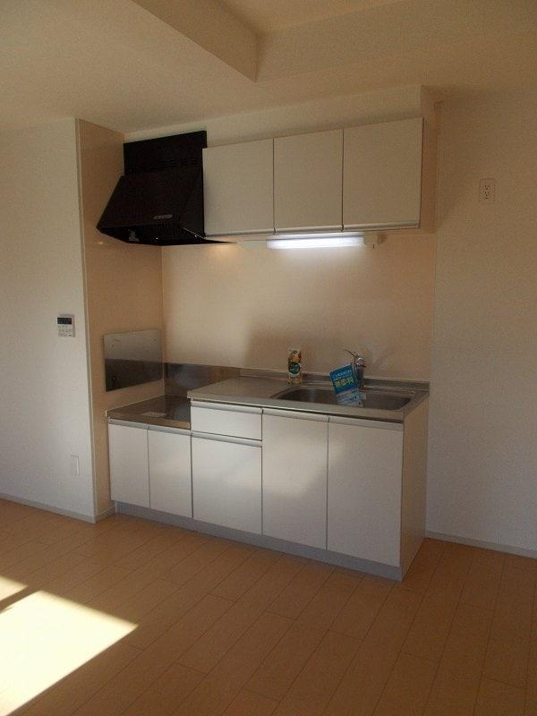 グリーンフォレストC 02010号室のキッチン