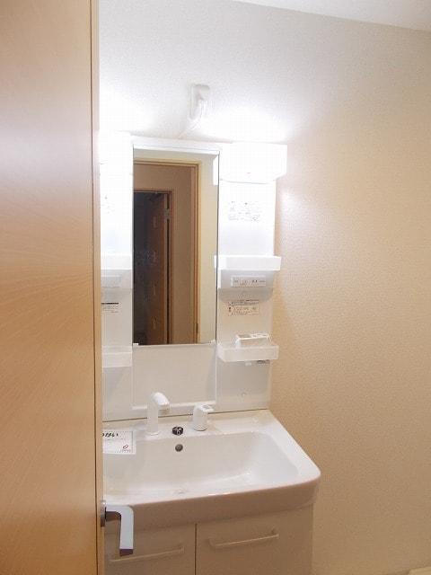 グリーンフォレストC 02010号室の収納