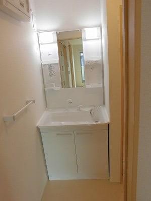 ペルマネンテB 02010号室の洗面所