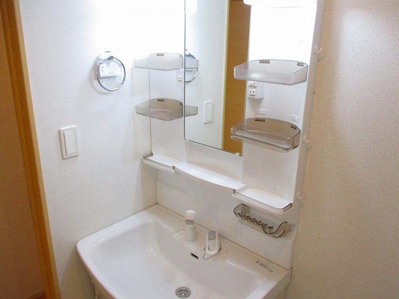 メゾン ラフレ 02030号室の洗面所