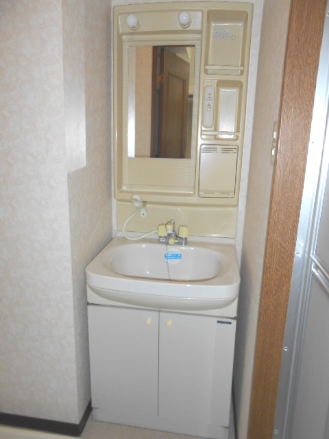サンテラス植松 103号室の洗面所