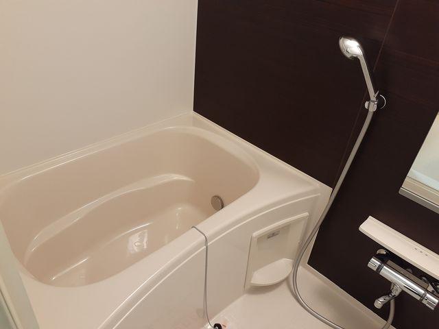 ディアコート積み木 02040号室の風呂