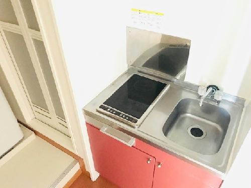 レオパレスROSEⅡ 204号室のキッチン