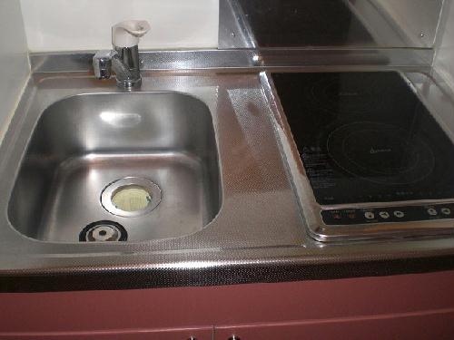 レオパレスシティーストーン 204号室のキッチン