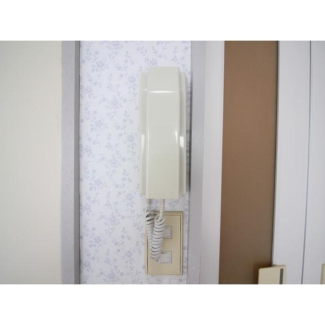 ライフピア久米川 202号室のトイレ