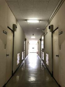 サンアベニュー師岡 0316号室のその他