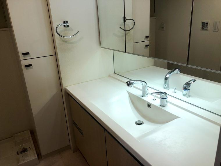 フォーサイトパークス 213号室の洗面所