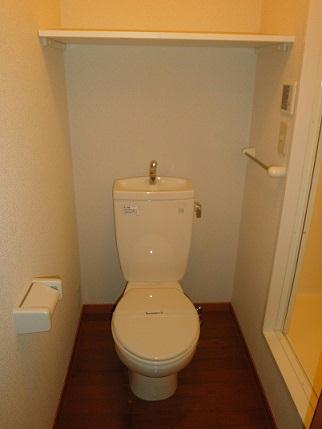 レオパレスヴィラ ラビニア 204号室のトイレ