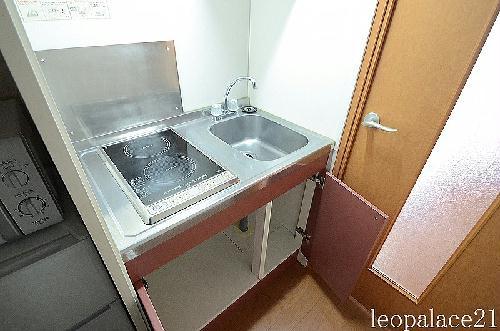 レオパレスカーサ笹下 201号室のキッチン