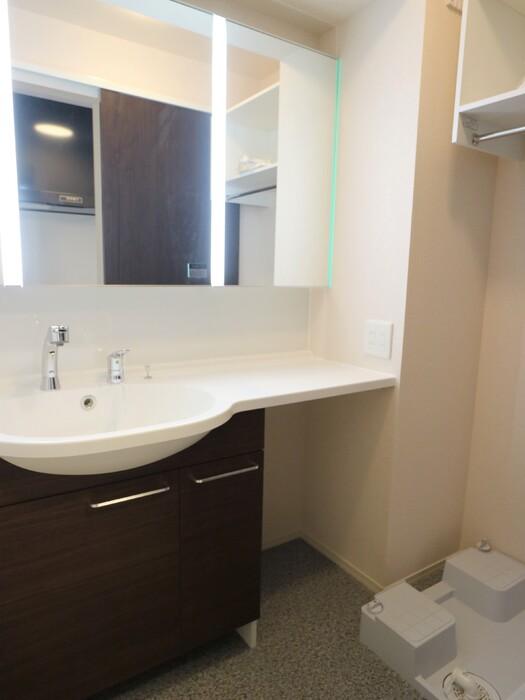 パークサイドメゾン新梅田 302号室の洗面所