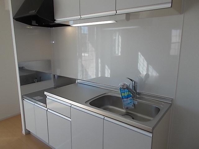 エレガンシアF 01010号室のキッチン
