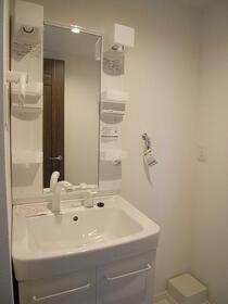 グリーンビレッジ 202号室の洗面所