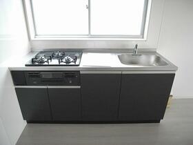 グリーンビレッジ 202号室のキッチン