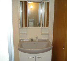 ハイリスベーネ池下 D-2号室の洗面所