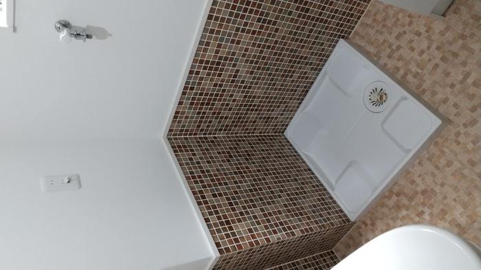 ドーリアNIJO駅前東 02号室の洗面所