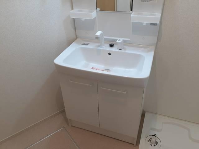 アロッジオ指月 02060号室の洗面所