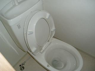 アーバンハウス本橋B 303号室のトイレ