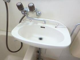 境南ベルメゾン 0201号室の洗面所