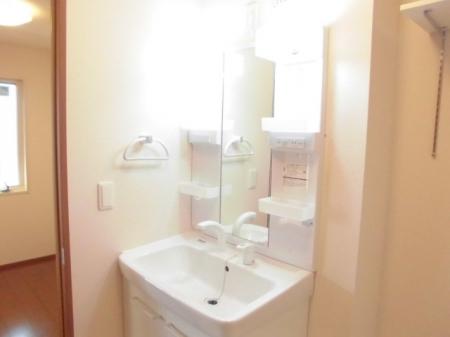 パークドオートム Fの洗面所