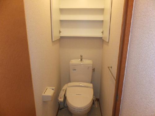 レオパレスエテルナたかせ 101号室のトイレ
