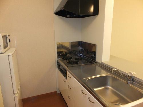 レオパレスエテルナたかせ 101号室のキッチン