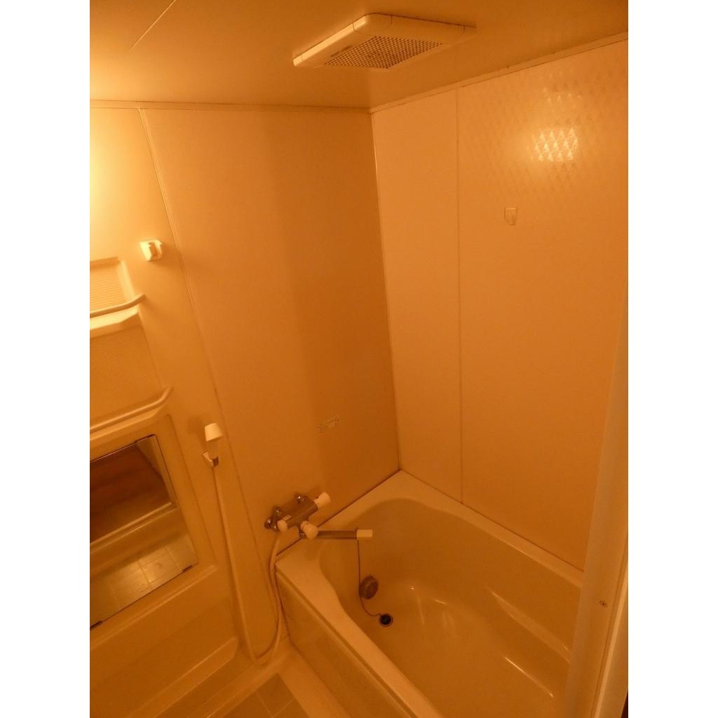 ルミエール ミキ 102号室の洗面所