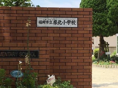 D-room南庄 弐番館 301号室のその他