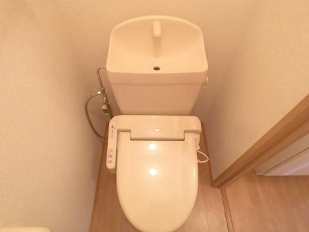 アムール A/B A103号室のトイレ